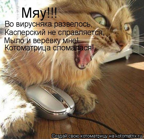 Котоматрица: Мяу!!! Во вирусняка развелось, Касперский не справляется, Мыло и верёвку мне! Котоматрица сломалася!