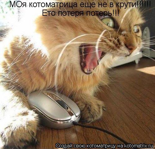 Котоматрица: МОя котоматрица еще не в крути!!!!!! Ето потеря потерь!!!