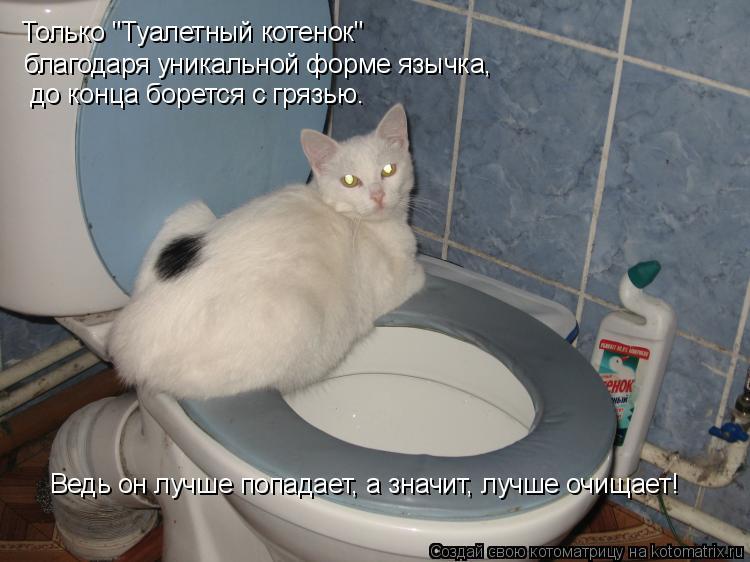 """Котоматрица: Только """"Туалетный котенок"""" благодаря уникальной форме язычка,   до конца борется с грязью. Ведь он лучше попадает, а значит, лучше очищает!"""