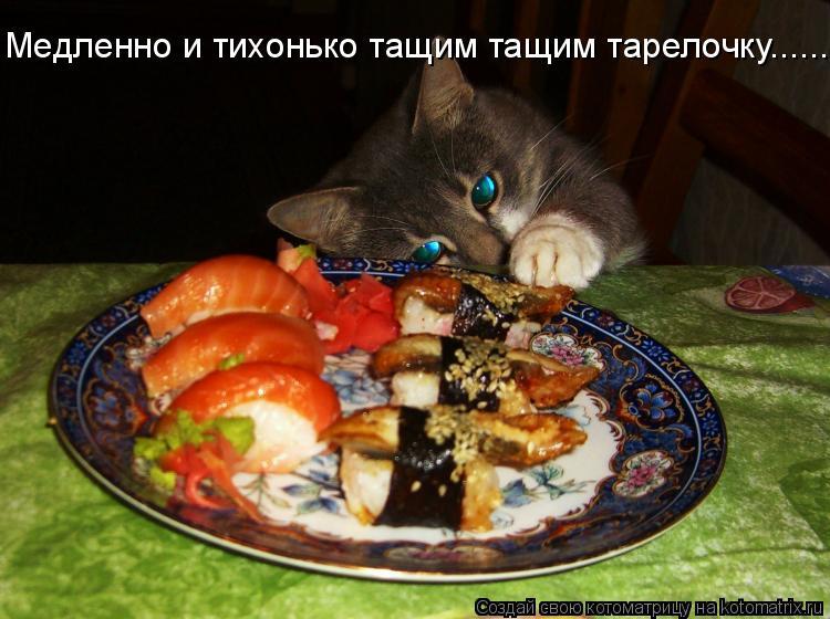Котоматрица: Медленно и тихонько тащим тащим тарелочку......