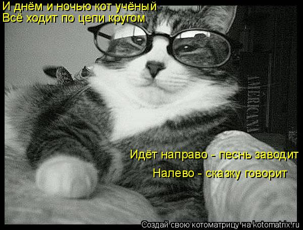 Котоматрица: И днём и ночью кот учёный Всё ходит по цепи кругом Идёт направо - песнь заводит Налево - сказку говорит