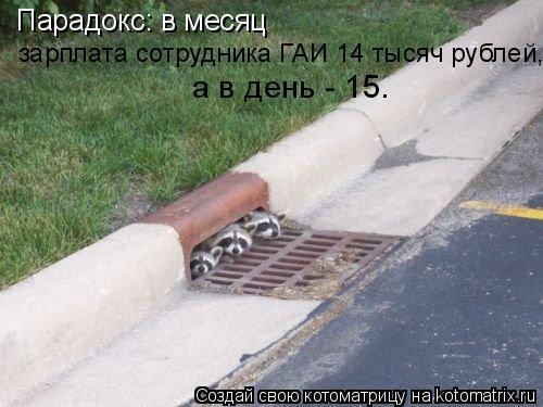 Котоматрица: Парадокс: в месяц  зарплата сотрудника ГАИ 14 тысяч рублей,  а в день - 15.
