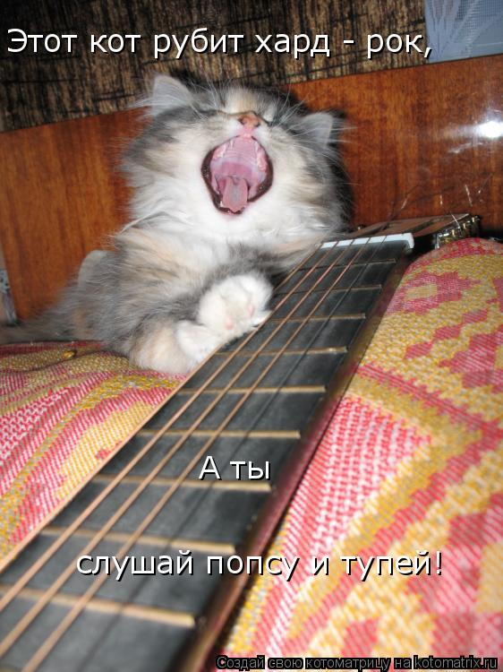 Котоматрица: Этот кот рубит хард - рок, А ты слушай попсу и тупей!