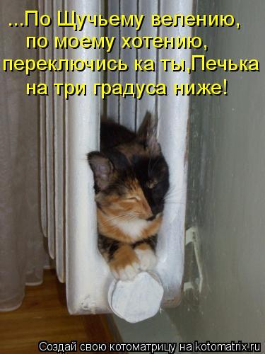 Котоматрица: ...По Щучьему велению, по моему хотению, переключись ка ты,Печька на три градуса ниже!