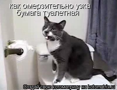 Котоматрица: как омерзительно узка бумага туалетная