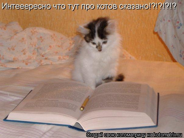Котоматрица: Интееересно что тут про котов сказано!?!?!?!?