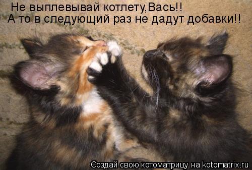 Котоматрица: Не выплевывай котлету,Вась!! А то в следующий раз не дадут добавки!!