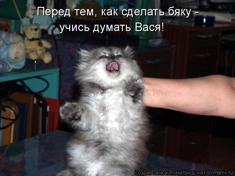 Котоматрица: Перед тем, как сделать бяку -  учись думать Вася!