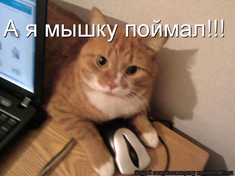 Котоматрица: А я мышку поймал!!!