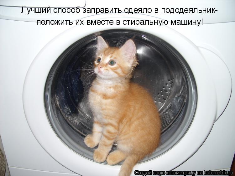 Котоматрица: Лучший способ заправить одеяло в пододеяльник- положить их вместе в стиральную машину!