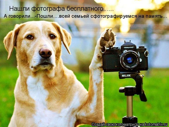 Котоматрица: Нашли фотографа бесплатного...... А говорили...-Пошли....всей семьей сфотографируемся на память...