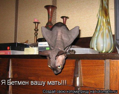 Котоматрица: Я Бетмен вашу мать!!!