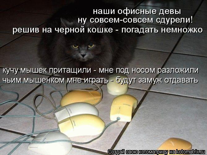 Котоматрица: наши офисные девы ну совсем-совсем сдурели! решив на черной кошке - погадать немножко кучу мышек притащили - мне под носом разложили чьим мы