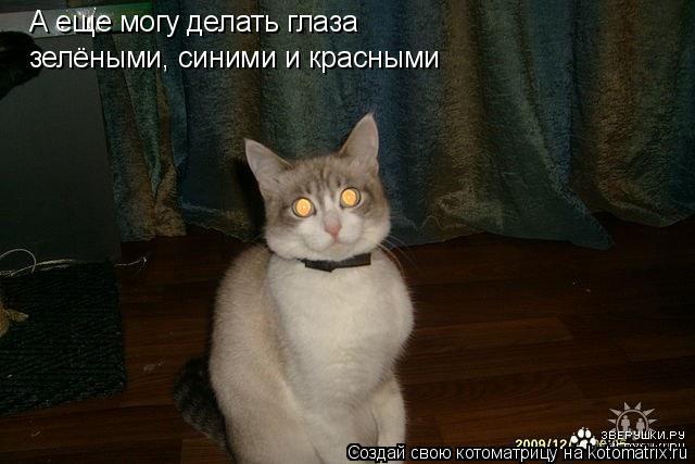 Котоматрица: А еще могу делать глаза  зелёными, синими и красными