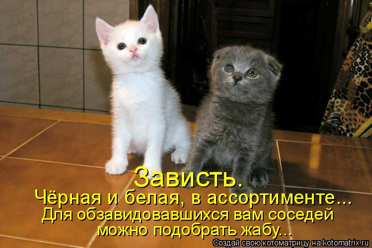 http://kotomatrix.ru/images/lolz/2009/12/30/447586.jpg