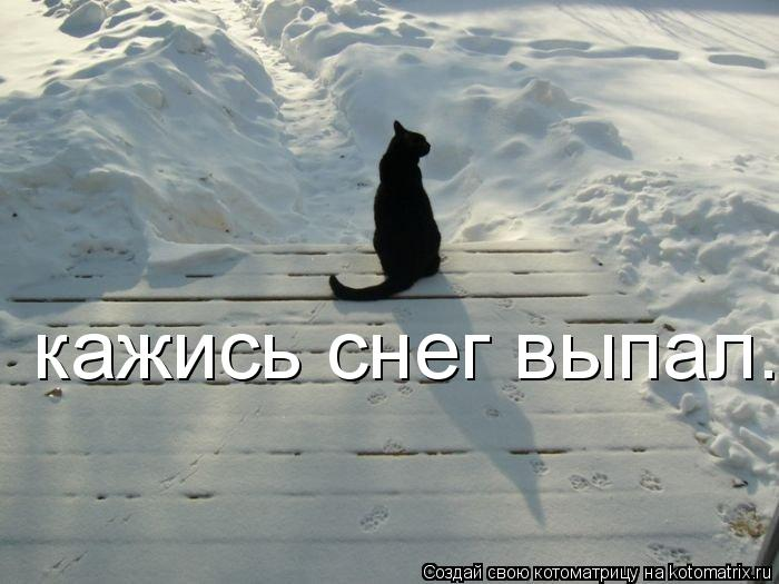 Котоматрица: кажись снег выпал...