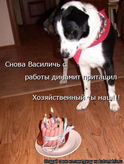 Котоматрица: Снова Василичь с  работы динамит притащил Хозяйственный ты наш!!!