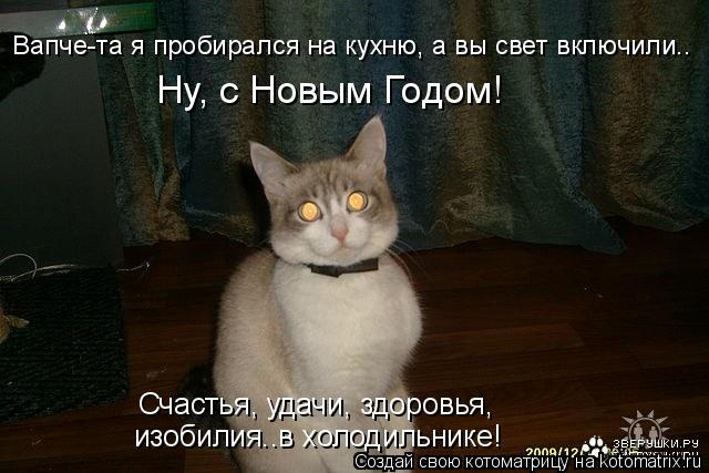 Котоматрица: Вапче-та я пробирался на кухню, а вы свет включили.. Ну, с Новым Годом! Счастья, удачи, здоровья,  изобилия..в холодильнике!