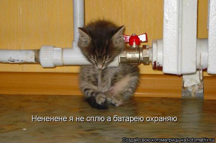 Котоматрица: Нененене я не сплю а батарею охраняю