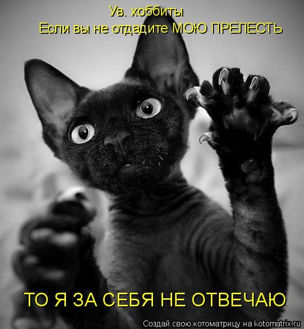 Котоматрица: Ув. хоббиты Если вы не отдадите МОЮ ПРЕЛЕСТЬ ТО Я ЗА СЕБЯ НЕ ОТВЕЧАЮ
