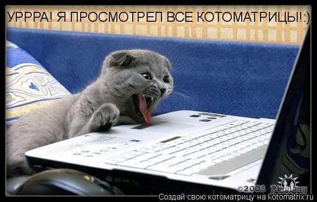 Котоматрица: УРРРА! Я ПРОСМОТРЕЛ ВСЕ КОТОМАТРИЦЫ!:)