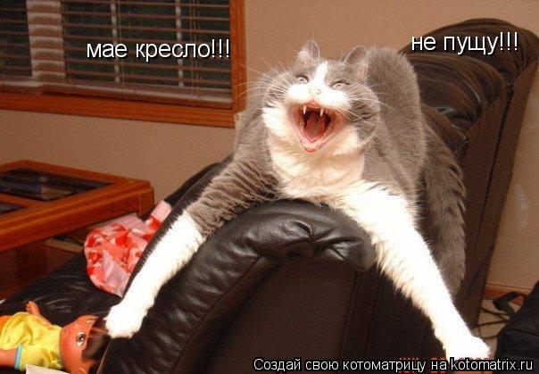 Котоматрица: мае кресло!!! не пущу!!!