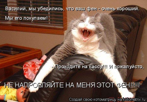 Котоматрица: Василий, мы убедились, что ваш фен - очень хороший. Мы его покупаем! - Проходите на кассу!!! И пожалуйсто,  НЕ НАПРОВЛЯЙТЕ НА МЕНЯ ЭТОТ ФЕН!!!!!