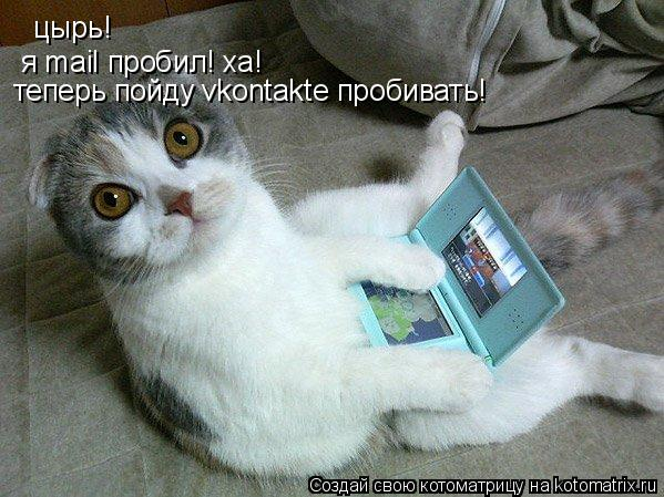 Котоматрица: цырь!  я mail пробил! ха! теперь пойду vkontakte пробивать!
