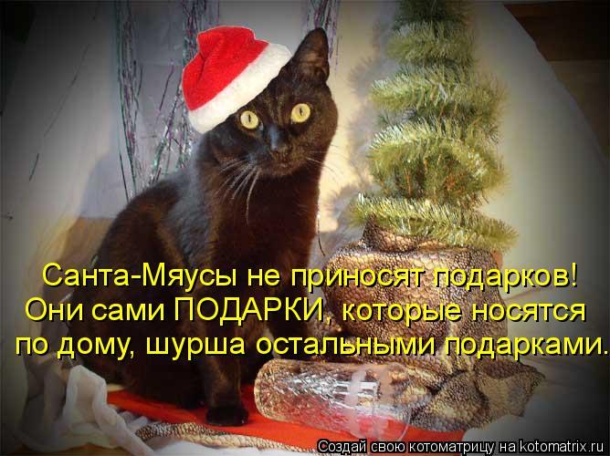 Котоматрица: Санта-Мяусы не приносят подарков! Они сами ПОДАРКИ, которые носятся  по дому, шурша остальными подарками.