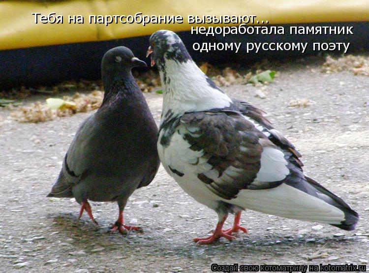 Котоматрица: Тебя на партсобрание вызывают... недоработала памятник  одному русскому поэту