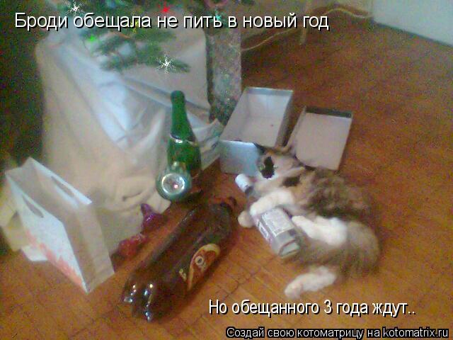 Котоматрица: Броди обещала не пить в новый год Но обещанного 3 года ждут..