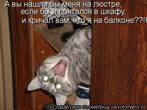 Котоматрица: А вы нашли бы меня на люстре,  если бы я прятался в шкафу, и кричал вам, что я на балконе??!!