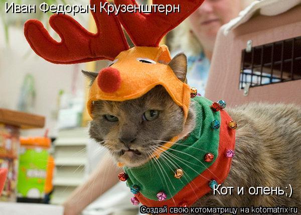 Котоматрица: Иван Федорыч Крузенштерн Кот и олень;)