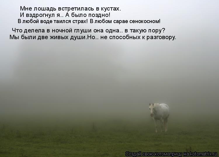 Котоматрица: Что делела в ночной глуши она одна.. в такую пору? Мне лошадь встретилась в кустах. И вздрогнул я.. А было поздно! В любой воде таился страх! В л