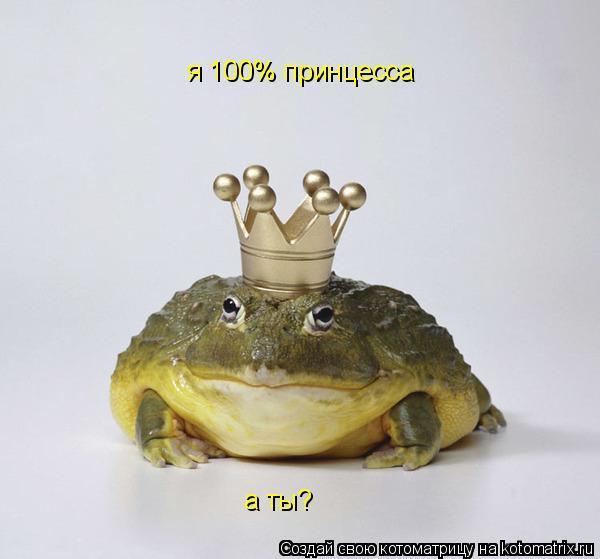Котоматрица: я 100% принцесса а ты?