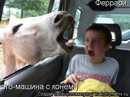 Котоматрица: Феррари. это-машина с конем:)
