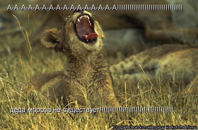 Котоматрица: А-А-А-А-А-А-А-А-А-А-А-А-А-А-А-А!!!!!!!!!!!!!!!!!!!!!!!!!!!!!!! деда мороза не существует!!!!!!!!!!!!!!!!!!!!!!!!!!!!!!!!!!!