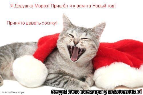 Котоматрица: Я Дедушка Мороз! Пришёл я к вам на Новый год! Принято давать сосику!
