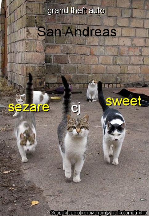 Котоматрица: grand theft auto San Andreas cj sweet sezare