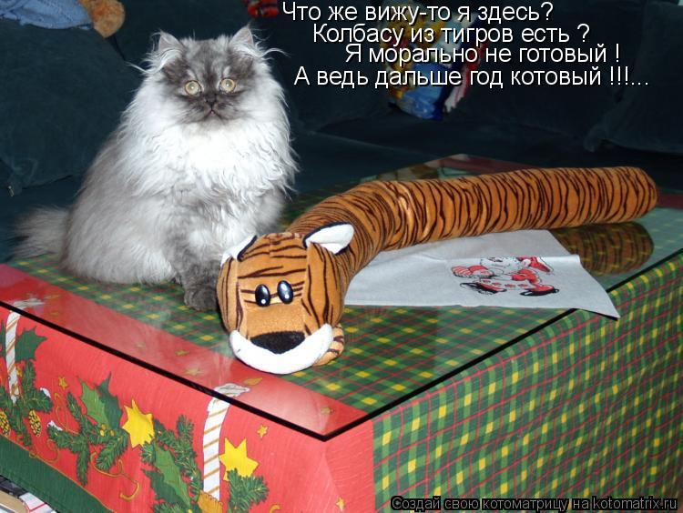 Котоматрица: Что же вижу-то я здесь? Колбасу из тигров есть ? Я морально не готовый !  А ведь дальше год котовый !!!...