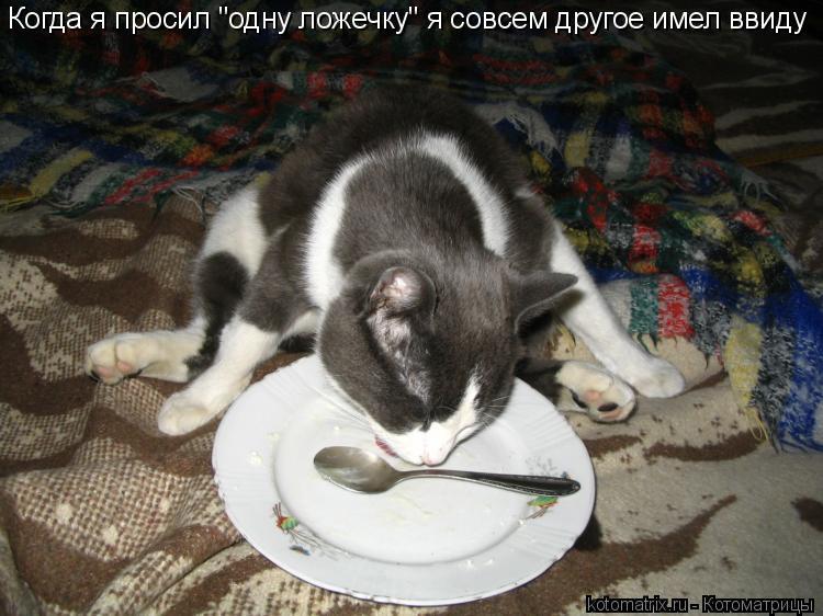 http://kotomatrix.ru/images/lolz/2010/01/01/448413.jpg