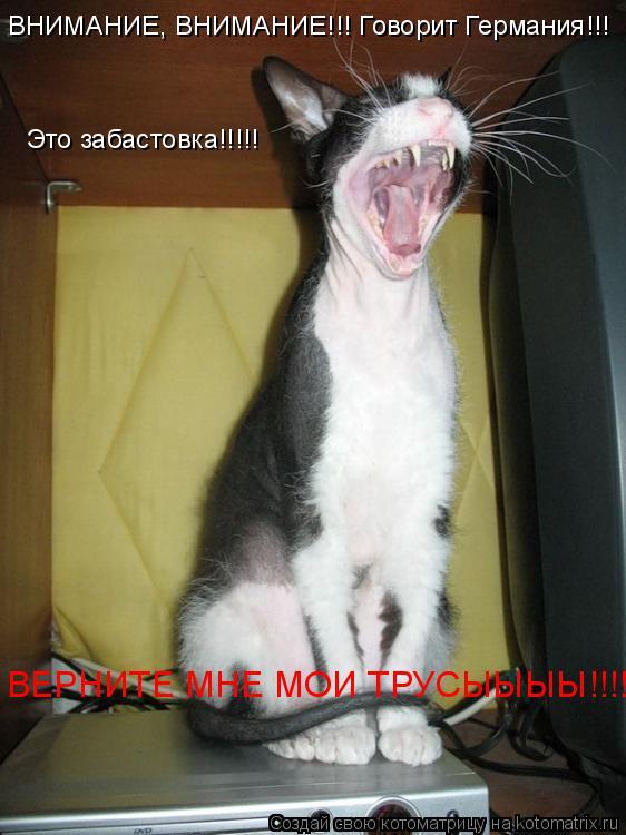 Котоматрица: ВНИМАНИЕ, ВНИМАНИЕ!!! Говорит Германия!!! Это забастовка!!!!! ВЕРНИТЕ МНЕ МОИ ТРУСЫЫЫЫ!!!!