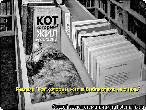 """Котоматрица: Ремейк """"Кот который жил в Библиотеке не очень"""""""