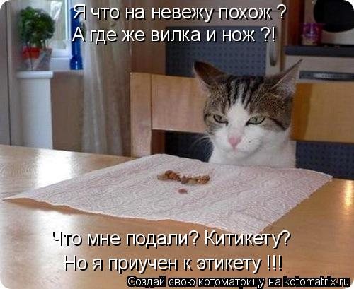 Котоматрица: Я что на невежу похож ? А где же вилка и нож ?! Но я приучен к этикету !!! Что мне подали? Китикету?
