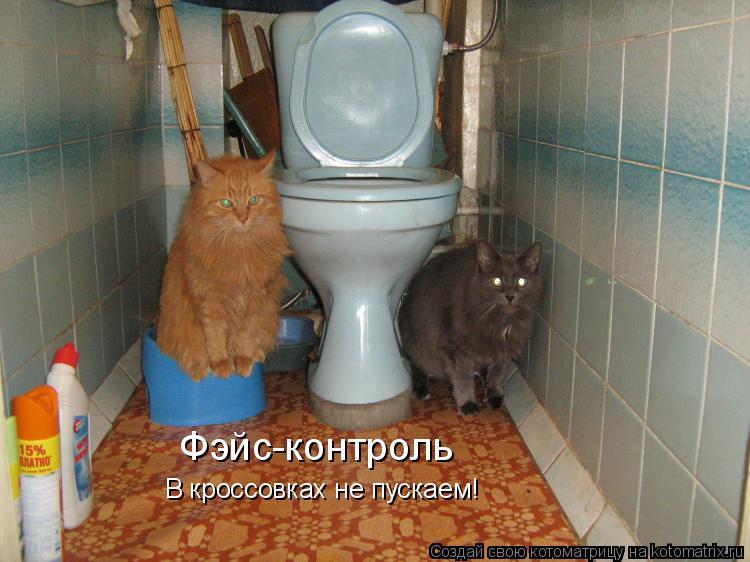Котоматрица: Фэйс-контроль В кроссовках не пускаем!