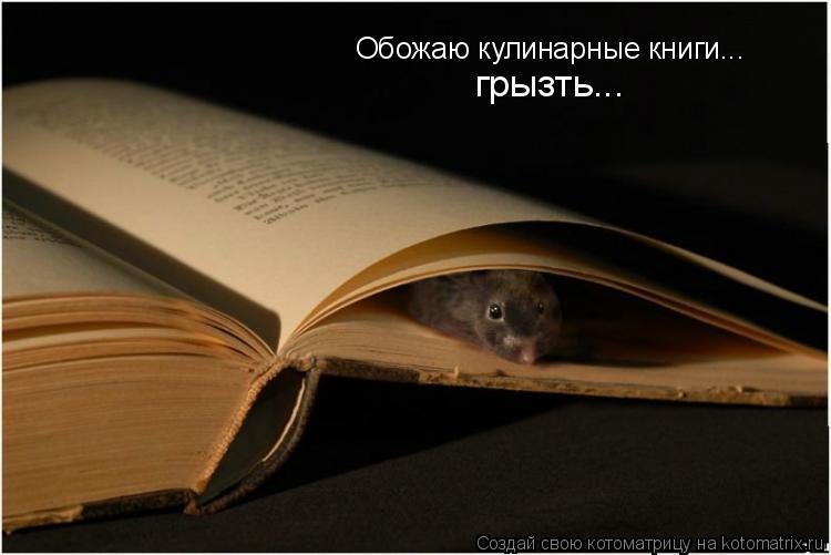 Котоматрица: Обожаю кулинарные книги... грызть...