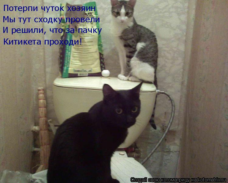 Котоматрица: Потерпи чуток хозяин Мы тут сходку провели И решили, что за пачку Китикета проходи!