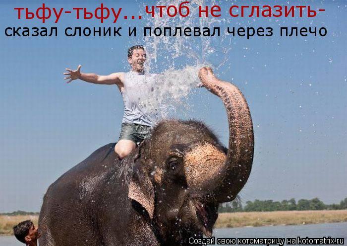 Котоматрица: тьфу-тьфу... сказал слоник и поплевал через плечо чтоб не сглазить-