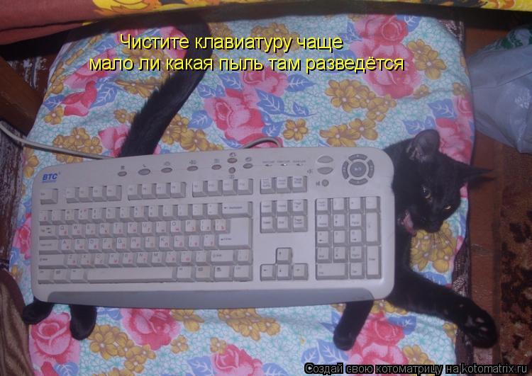 Котоматрица: Чистите клавиатуру чаще мало ли какая пыль там разведётся