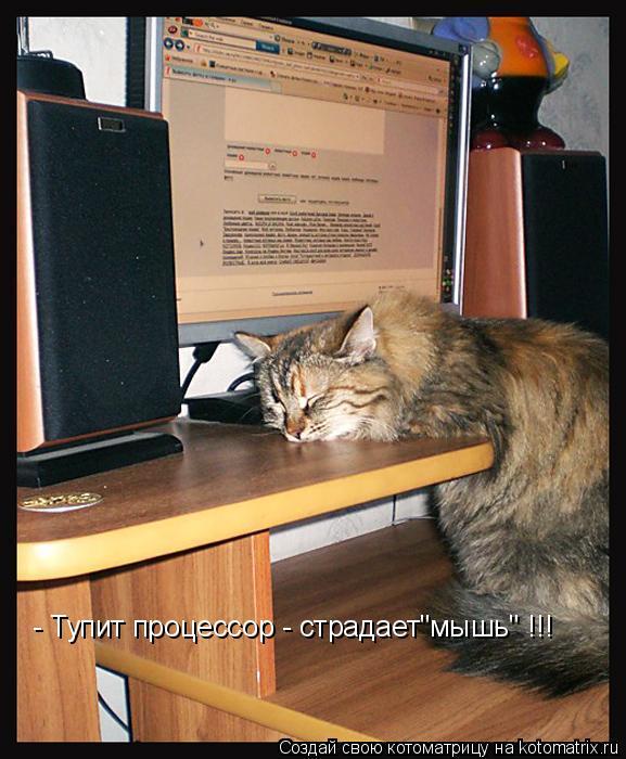"""Котоматрица: - Тупит процессор - страдает""""мышь"""" !!!"""